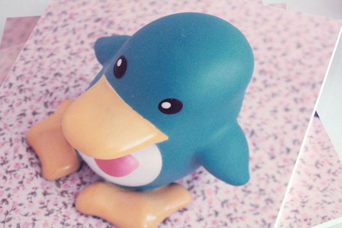 diy_forex_pingouin